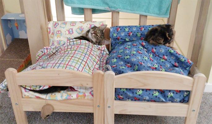 ikea-cat-bed-3-685x402