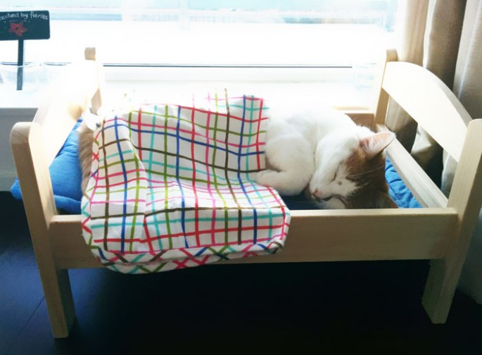 ikea-cat-bed-6-685x504