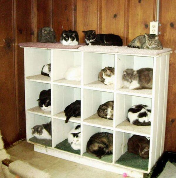 cat-tower002handmade