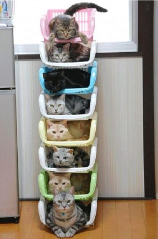 cat-tower006handmade