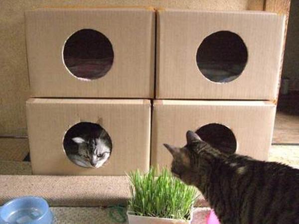 cat-tower013handmade