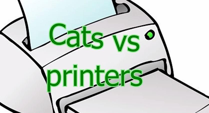 cat-vs-priter