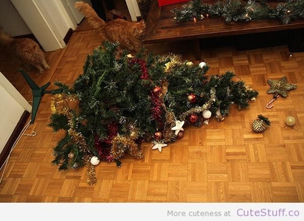 christmastree-cat12
