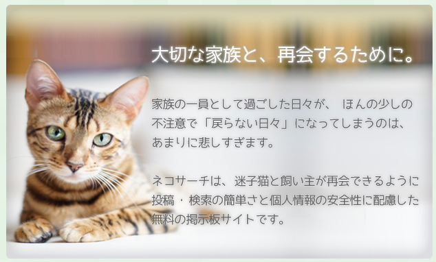 nekosearch