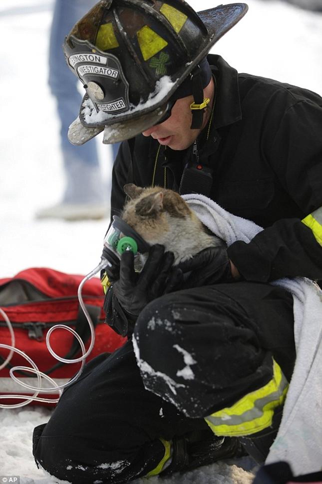 消防士の暖かい手当を受ける。