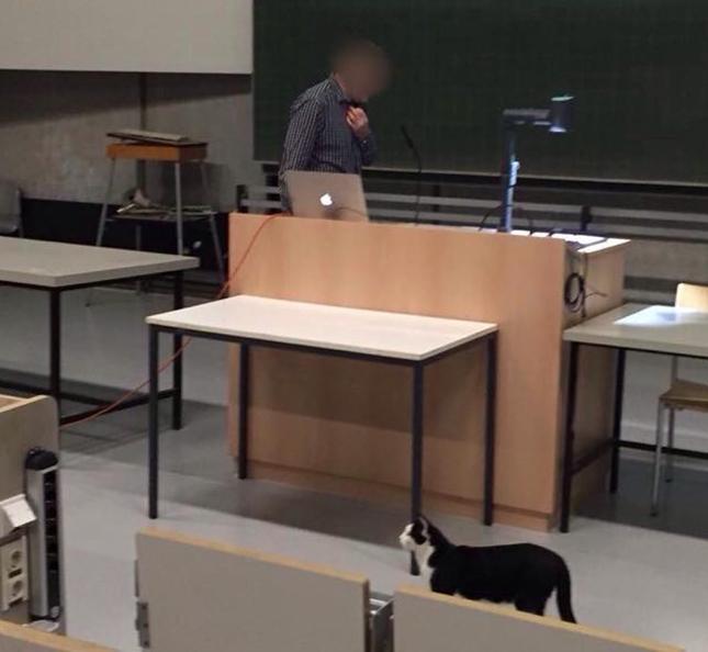 講義を受けに来た?