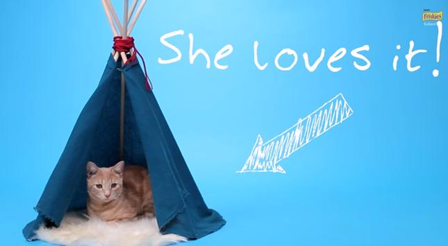 可愛らしい猫テントの完成!
