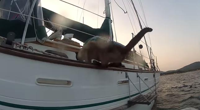 ボートから船へ華麗にジャンプ!