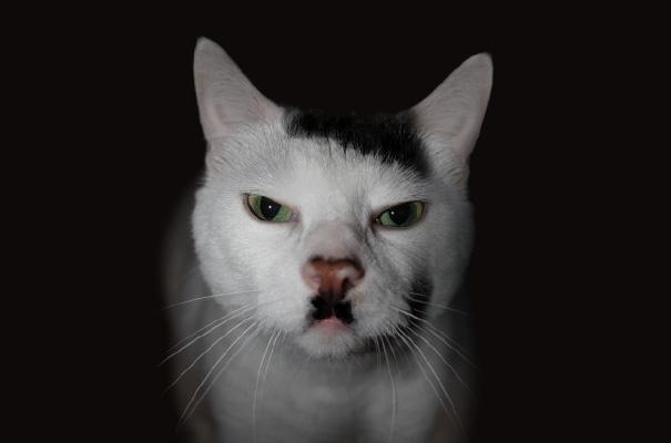 ヒトラー。