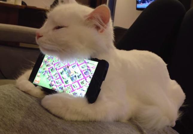 ネコ型スマホスタンド!