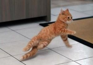 ブレイクダンス?