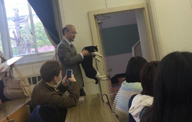 授業を強制退出させられる猫。