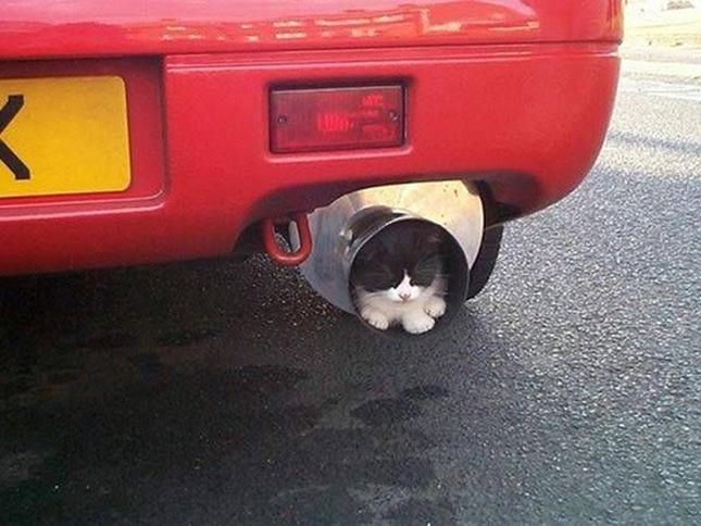 車のマフラーも絶対ダメ!