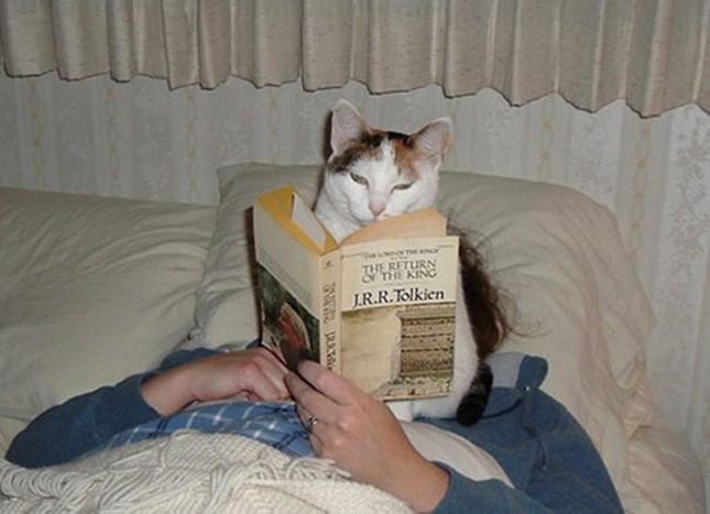 まだ読むならこうしてやる!