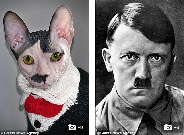 ポルトスとヒトラー