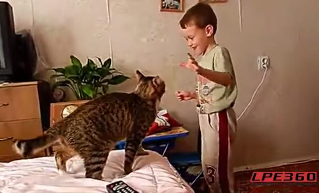 さらに怒る猫。