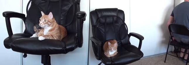 椅子を奪われたら予備で対応。