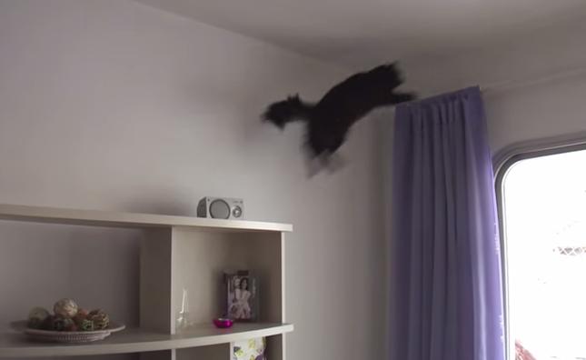 レールもジャンプで到達!