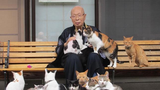 住職さんと猫達。