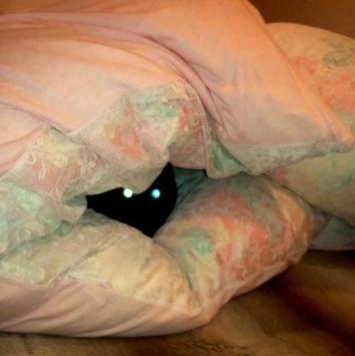 隠れビーム。