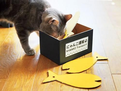 forkrift002cat