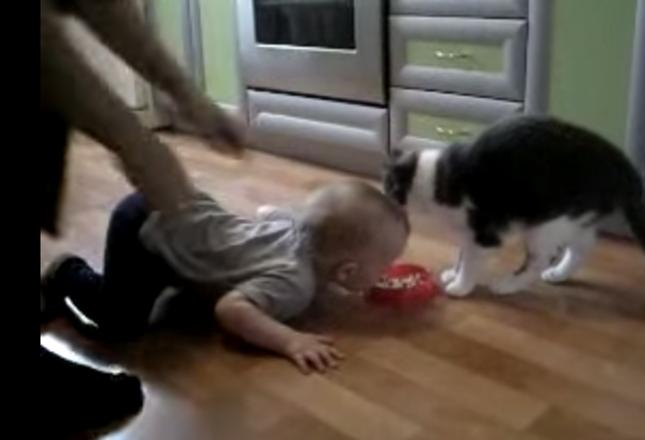 突然自分も食べたくなった赤ちゃん。