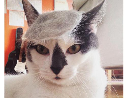 ベレー帽風?