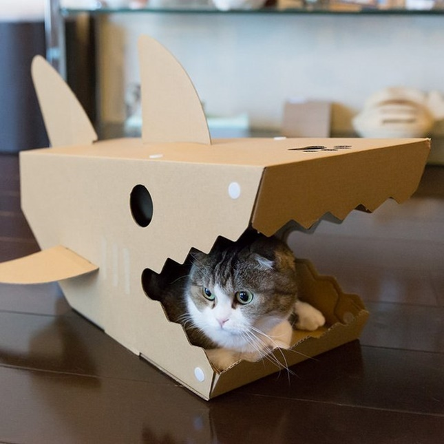 サメ型キャットハウス!