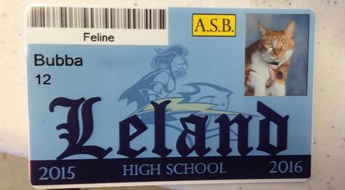 ゲットした学生ID。