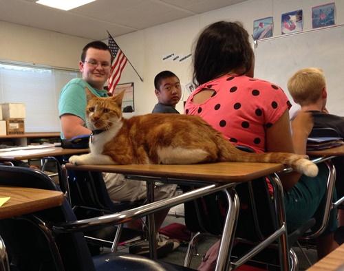 クラスに馴染むババ。