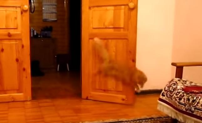 なぜか音とともにジャンプ!