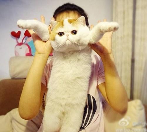抱きしめたいっ!