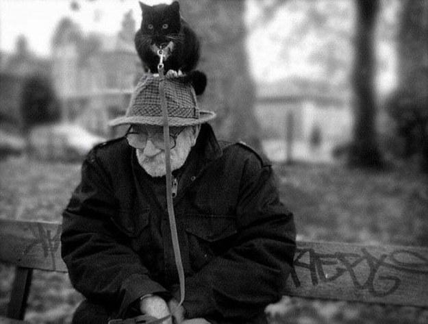 おじいさんと猫。