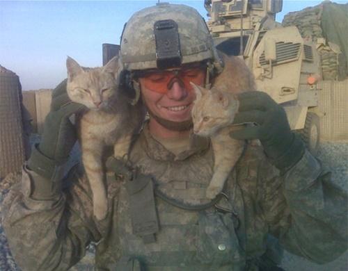戦地での心の拠り所は猫。