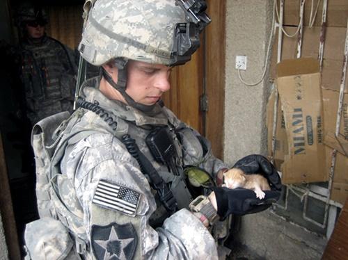 子猫を救助する兵士。