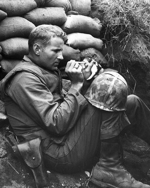 ミルクを子猫に与える兵士。