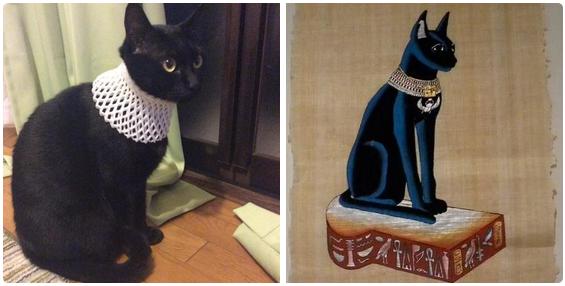 エジプトの猫と完全に一致する黒猫。