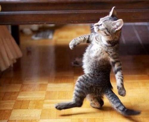 ボスレベルになると二足歩行。