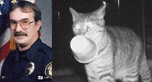 泥棒猫と警察官の飼い主さん。