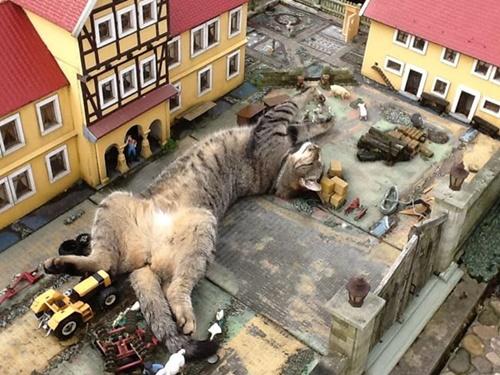 街も巨猫によって占拠されてしまった。