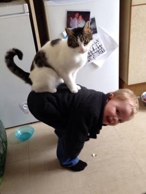 なかよしおんぶな猫と少年。