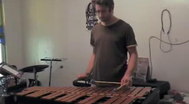 木琴を練習している飼い主さん。