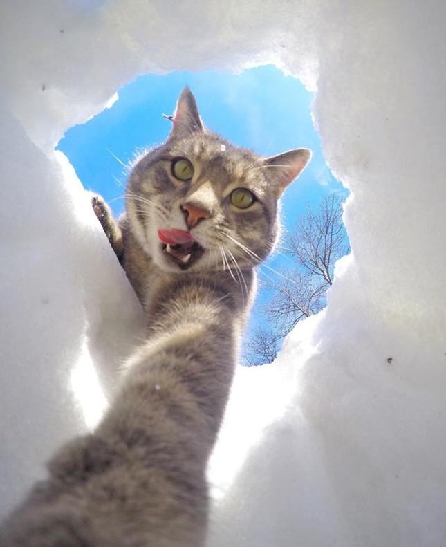 穴をほったよ!