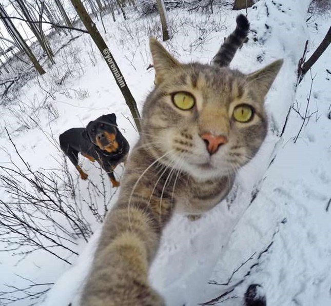 雪の日のお散歩!