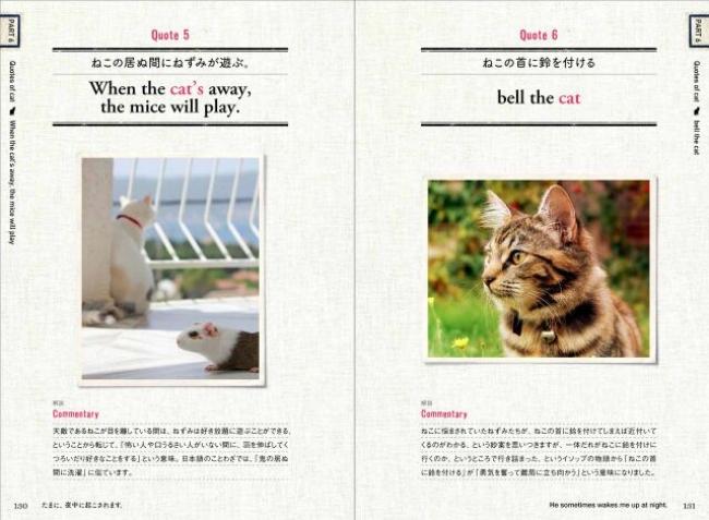 英語の猫ことわざ!