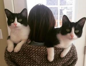 2匹の猫を肩乗せ