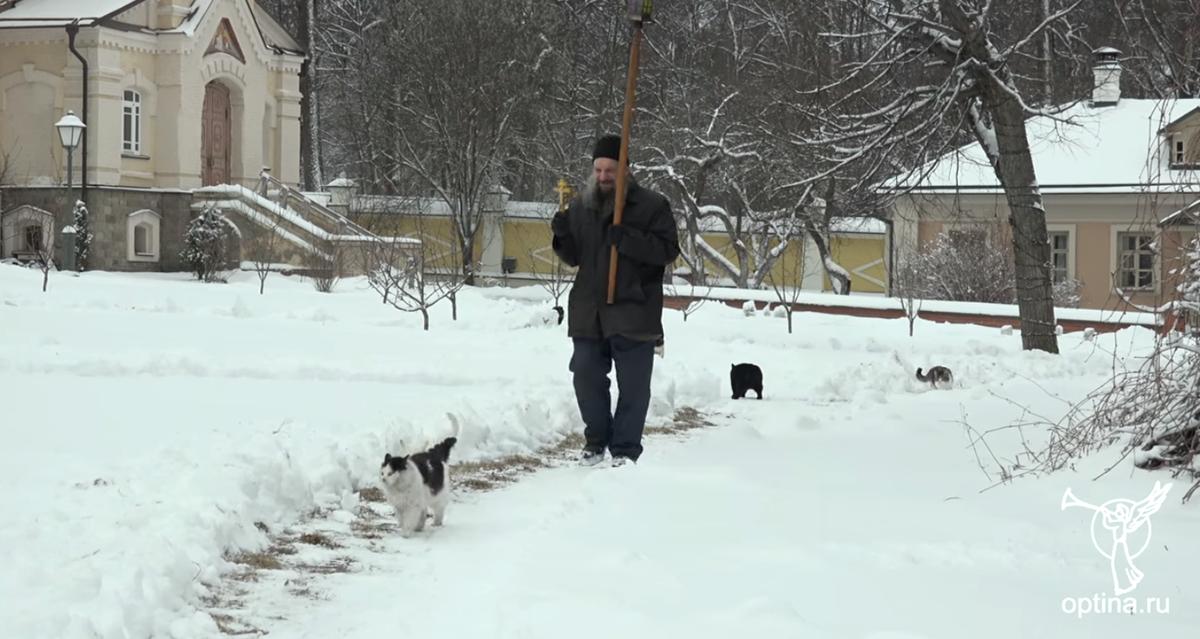 聖職者と猫の行進