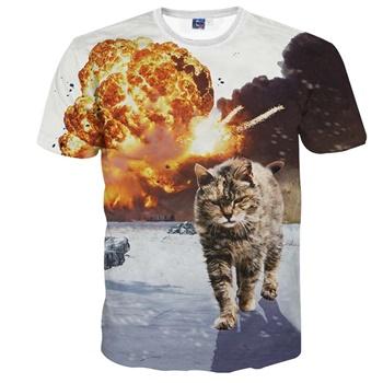 戦場の中の猫。