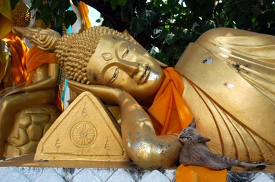 仏像の腕枕。