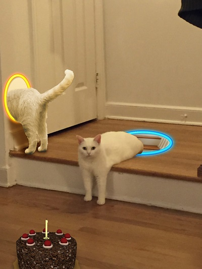 ワープ猫!